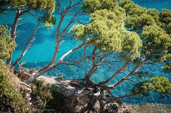 Herrliche Porquerolles-Bucht mit türkisfarbenem Wasser am Küstenweg, gegenüber der Presqu'île de Giens